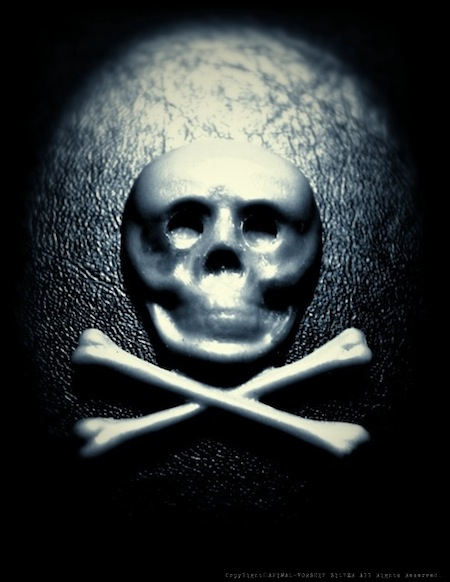 1800's Skull & Bones