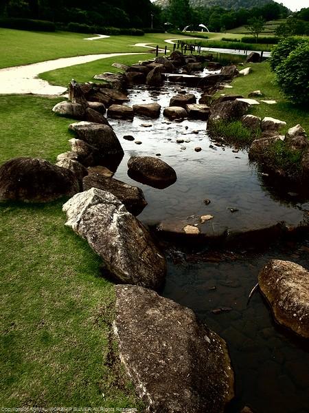 公園内には川や沼も