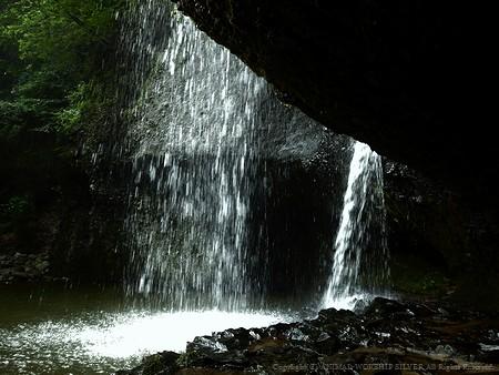滝の裏側に回れます