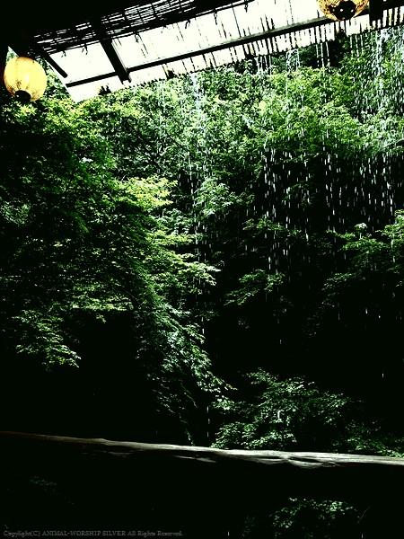 緑と水によってマイナスイオンに溢れています