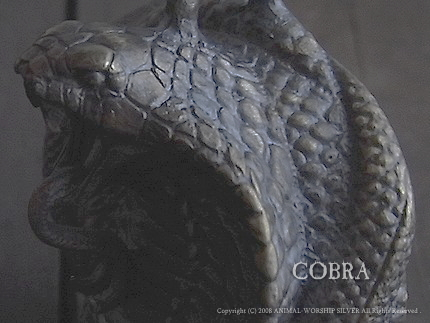 cobra8.jpg