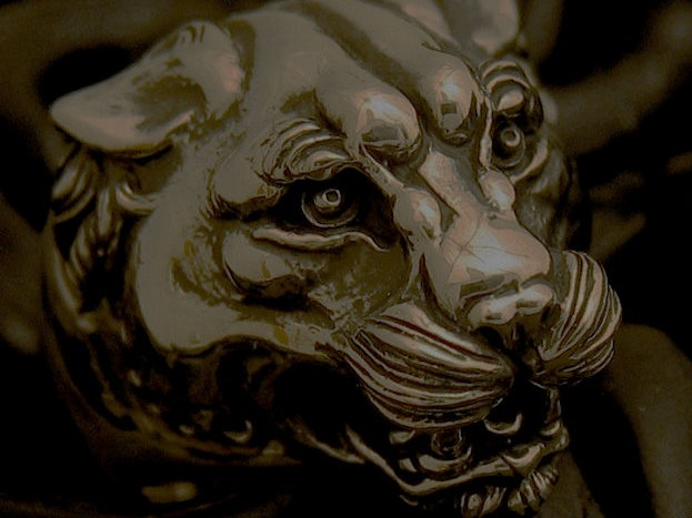 panther1.jpg